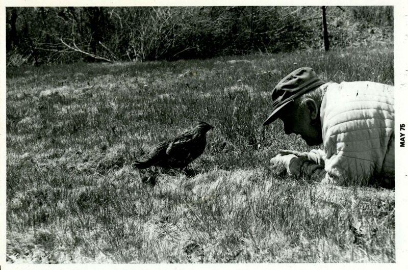 Harley Adams + Bird