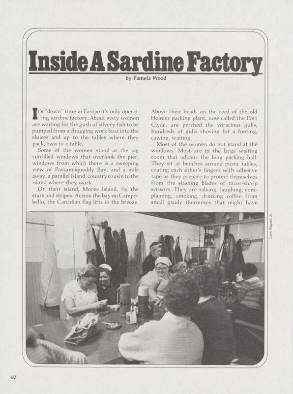 Inside a Sardine Factory