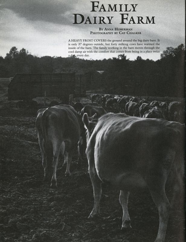 Family Dairy Farm