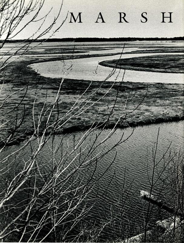 Marsh People