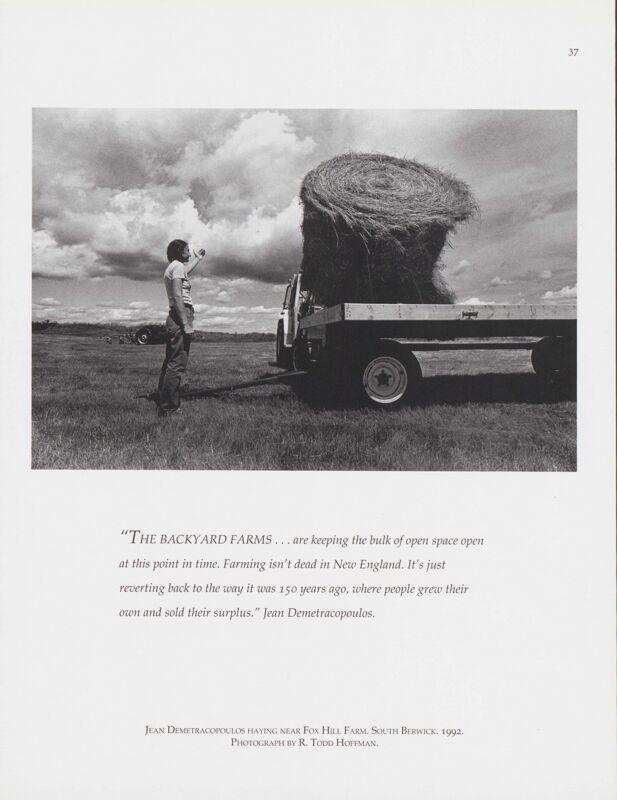 Haying Near Fox Hill Farm, South Berwick, 1992