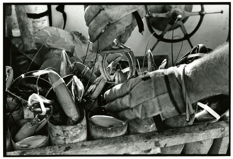 Lobstermen at Union & Widgery Wharf